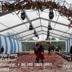 Luxury Transparent PVC Tent for Wedding in Guangzhou